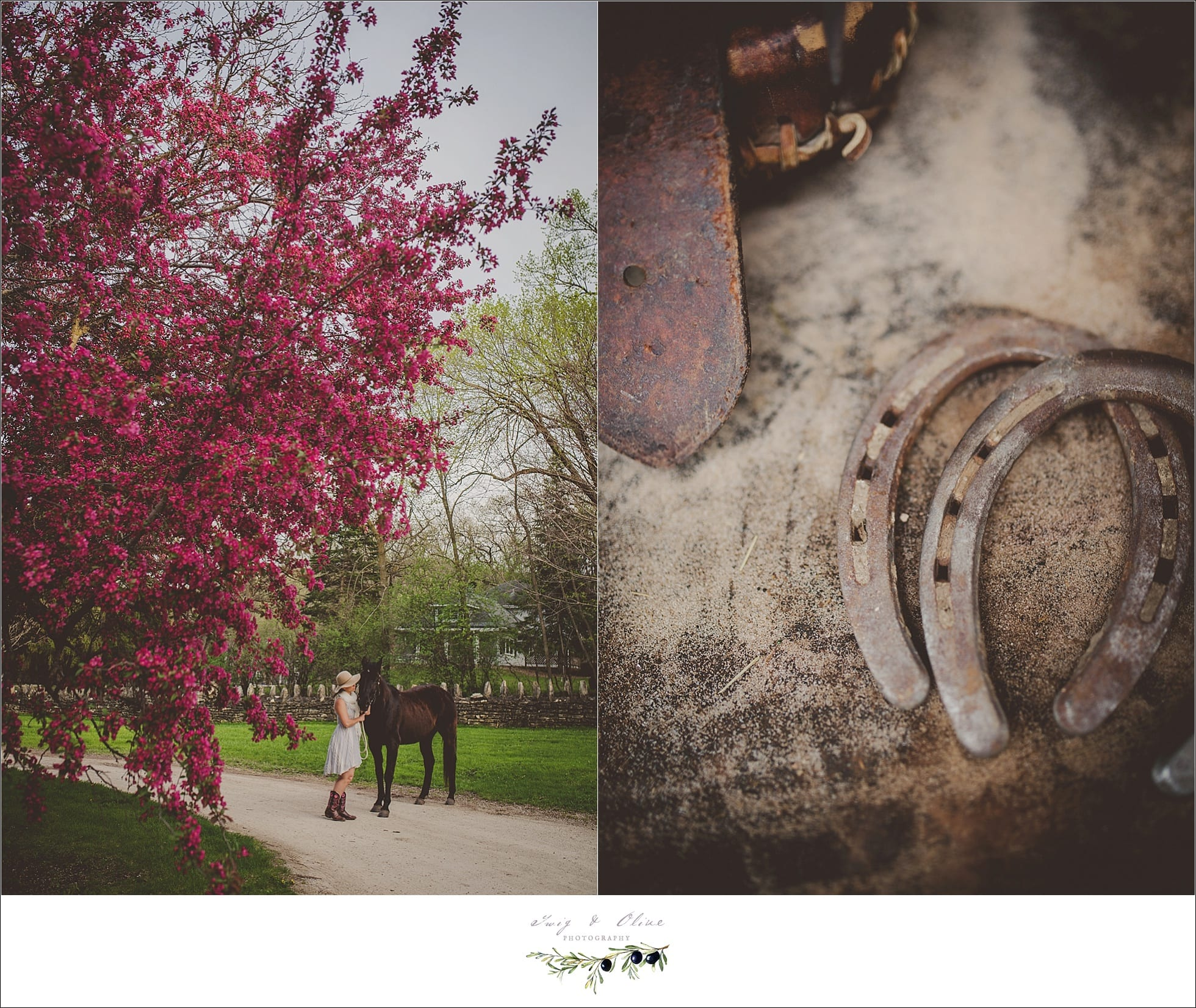 horse shoes, details, rustic, outdoors, sunset sessions, Minnesota Wisconsin neighbors
