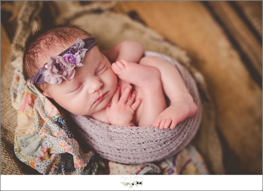 purple hair flower