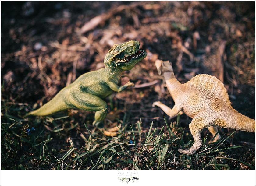 toy dinosaur fight